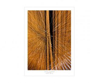 CERN PDF-13